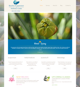 Beaches and Wellness Center website by quantum seo solutions